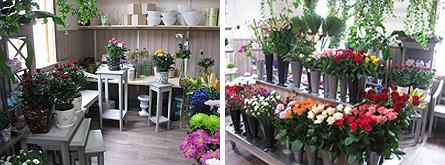 kukkakauppa1